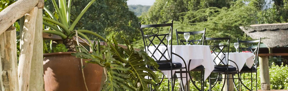 Dining on the terrace at Tloma Lodge