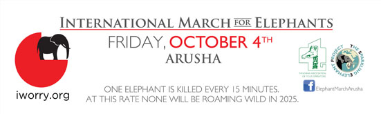 iworry.org - International March for Elephants