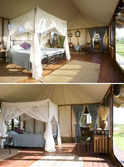 King and Twin tents at Maramboi tented camp with a view to the private ensuite bathrooms with built-in showers