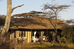 A luxury tent at Moru Under Canvas